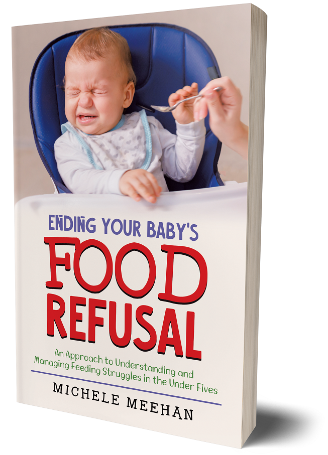 3D cover image_Ending Your Baby's Food Refusal by Michele Meehan(1)