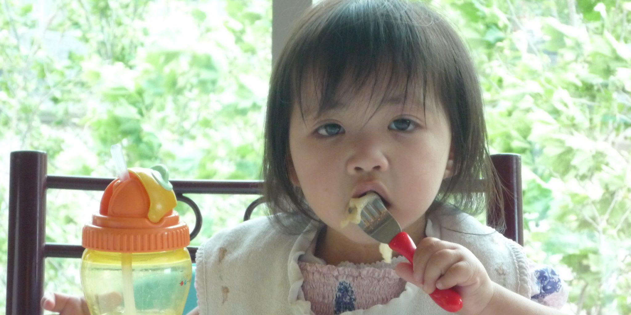 how-much-should-my-toddler-eat-parenting-matters-michele-meehan